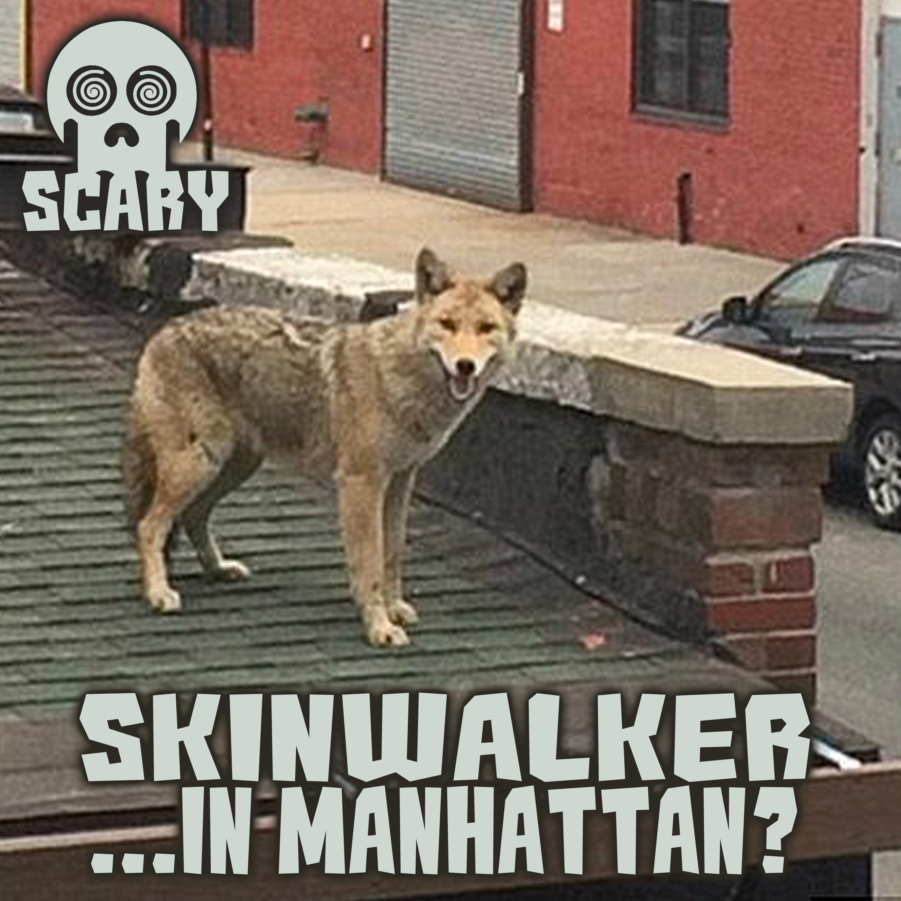 Episode 14: Skinwalker in Manhattan? | Scary Stories by